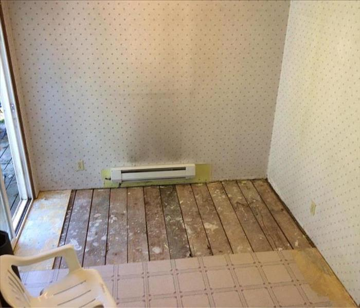 Residential Mold Loss After