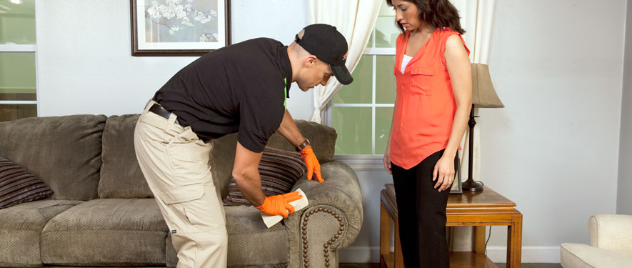 Coos Bay, OR carpet upholstery cleaning